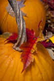 Pumpkin with an autumn maple leaf on it Royalty Free Stock Photography