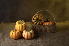 Pumpkin. Autumn pumpkins with leaves on wooden board Stock Images