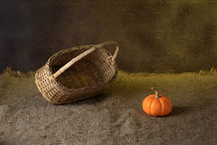 Pumpkin. Autumn pumpkins with leaves on wooden board Stock Image