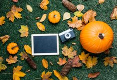 Pumpkin and autumn season leaves with blackboard menu and camera. On grass background Royalty Free Stock Images