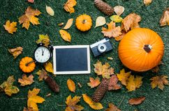 Pumpkin and autumn season leaves with blackboard menu and camera. On grass background Stock Images