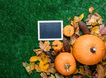 Pumpkin and autumn season leaves with blackboard menu. On grass background Royalty Free Stock Photo
