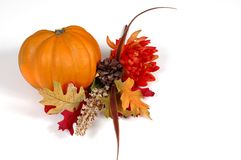 Pumpkin in autumn setting. Pumpkin and fall flowers isolated on white Stock Photos