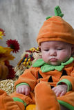 Pumpkin Baby Royalty Free Stock Photo