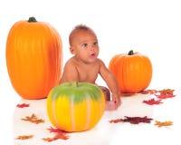 Pumpkin Baby Stock Image