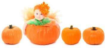 Free Pumpkin Baby Stock Images - 16092084