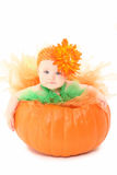 Pumpkin Baby. Adorable baby girl in orange and green tutu siting in pumpkin over white background Stock Photo