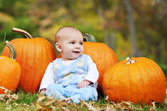 Pumpkin Baby Stock Photos