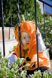 Pumpkin baby Stock Photography
