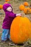 Pumpkin baby Stock Foto