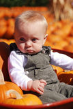 Pumpkin Baby Royalty Free Stock Photo