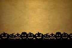 Pumpkin Backbround Stock Image