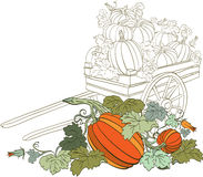 Pumpkin Background. Autumn harvest pumpkins in a wheelbarrow Royalty Free Stock Photography