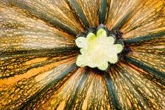 Pumpkin background. Abstract pumpkin closeup texture background stock photo