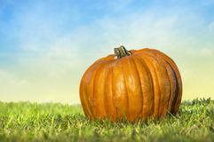 Pumpkin on background of blue sky Royalty Free Stock Image