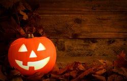 Pumpkin background Stock Image