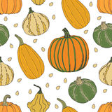 Pumpkin background Royalty Free Stock Image