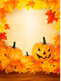Pumpkin background with leaves Stock Image
