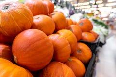 Pumpkin background. Many pumpkins on a local organic food market on Bali island, Indonesia. Asia royalty free stock photo