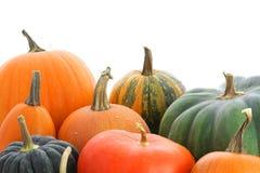 Pumpkin background Stock Photography