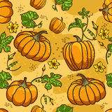 Pumpkin Background seamless pattern. Seamless texture background with orange pumpkins Royalty Free Stock Images