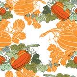 Pumpkin Background seamless pattern. Pumpkin Background autumn seamless pattern Royalty Free Stock Photography