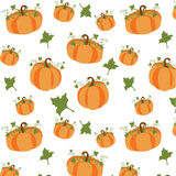 Pumpkin Background. Pumpkin set on white background. EPS file available Stock Image