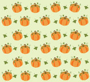 Pumpkin Background. Pumpkin set on white background. EPS file available Stock Photos