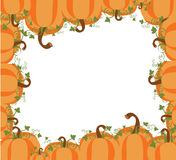 Pumpkin Background. Pumpkin set on white background. EPS file available Royalty Free Stock Photo