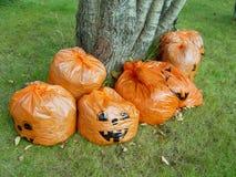 Pumpkin Bags stock photos