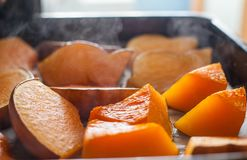 Pumpkin baked in oven Stock Images
