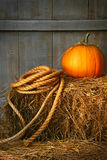 Pumpkin on a bale of hay royalty free stock images