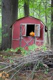 Pumpkin in barn window. Spooky Halloween pumpkin in abandoned barn window Stock Photography