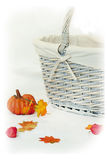 Pumpkin and basket Stock Photography