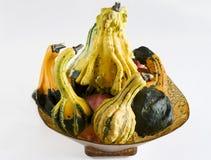 Pumpkin basket. Basket of a minute pumpkins Stock Photography
