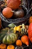 Pumpkin Basket Royalty Free Stock Images