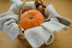 Pumpkin in the basket Royalty Free Stock Images