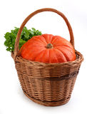 Pumpkin in the basket Royalty Free Stock Photo