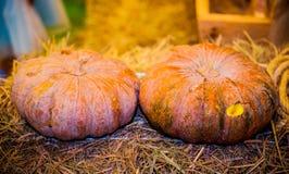 Pumpkin on basket. Royalty Free Stock Photo