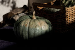Pumpkin with basket. Thanksgiving pumpkin squash with basket Stock Images