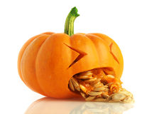 Pumpkin being sick Royalty Free Stock Photo