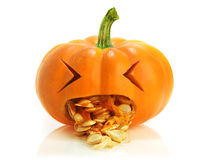 Pumpkin being sick Stock Image