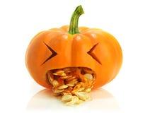 Pumpkin being sick stock image