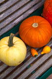 Pumpkin on a bench. Young and fresh Royalty Free Stock Photography