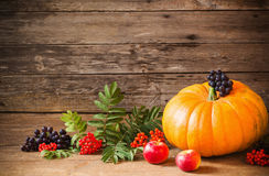 Pumpkin with berrie on wooden background. Pumpkin with berries on old wooden background stock image
