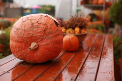 Pumpkin. Big orange pumpkin stacked on the red table Royalty Free Stock Photos