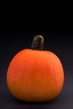 Pumpkin on black. Pumpkin on a black background Stock Images