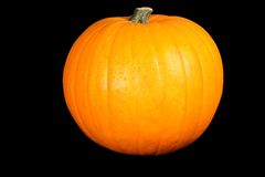 Pumpkin on the black background Stock Photography
