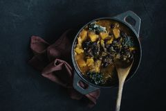 Pumpkin and black beans  chili royalty free stock photos