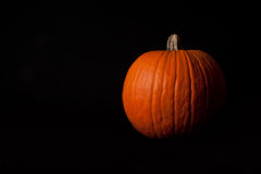 Pumpkin on Black - Horizontal Royalty Free Stock Photography